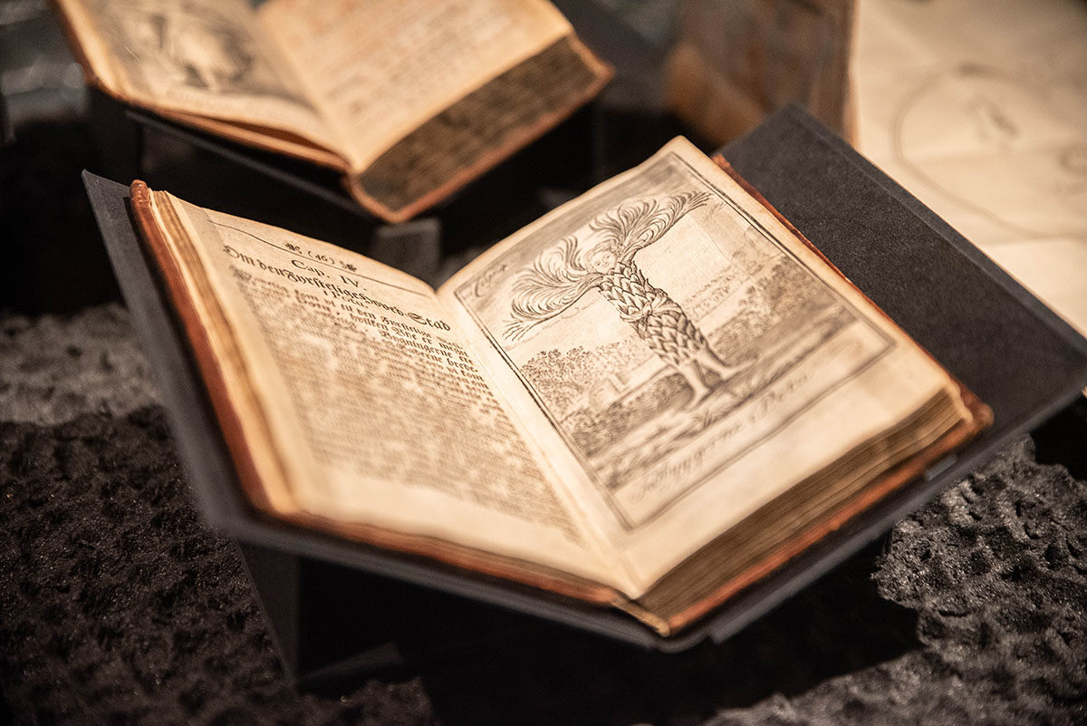 Bilde av bøker i monter
