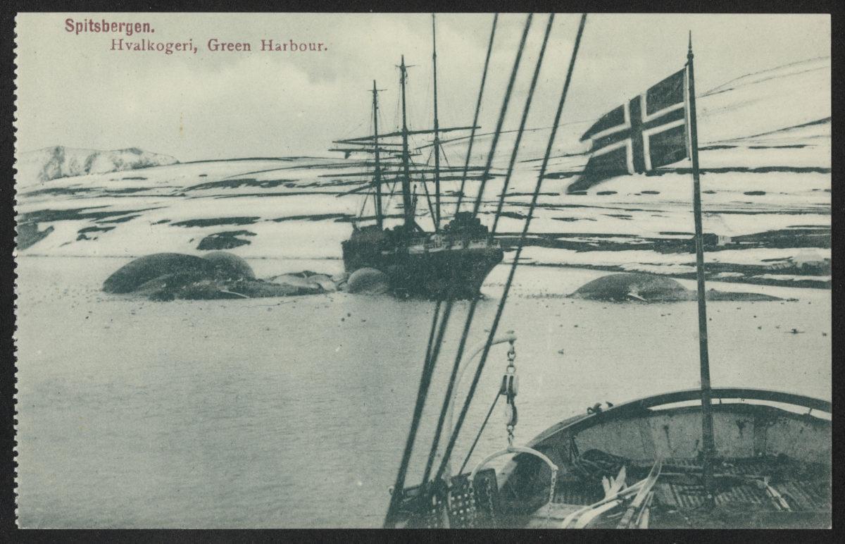 Skip, snø, land, norsk flagg