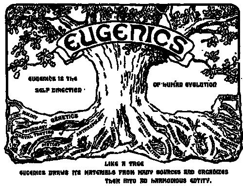 Logo med et tre