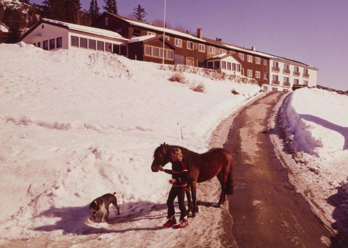 Hotellbygning i bakgrunnen, snødekt vei, kvinne med hest, hund som går ved siden av.