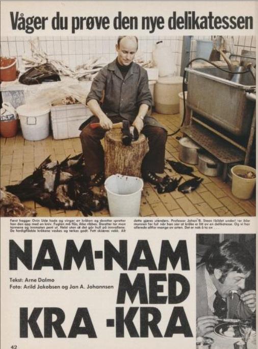 Avisoppslag med bilde av mann som hakker hodet av kråker