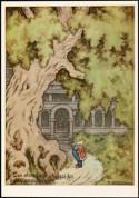 «Den store eken skygget for kongsgården»