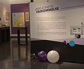 oversiktsbilde fra utstillingen - rom med ballonger